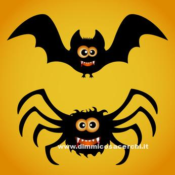 Bat and spider