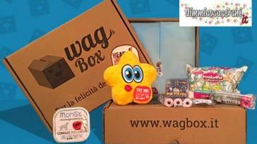 wagbox-articolo