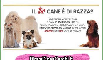 Royal Canin Campioni omaggio alimento umido
