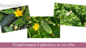 Trasformare il giardino in un orto