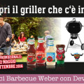 Vinci Barbecue Weber con Develey