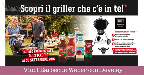 Vinci Barbecue Weber con Develey