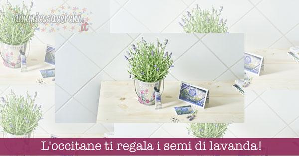 L'occitane ti regala i semi di lavanda, un secchiello e crema omaggio