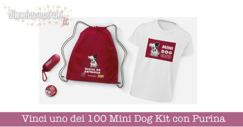 Vinci uno dei 100 Mini Dog Kit con Purina