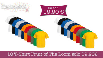 10 T-Shirt Fruit of The Loom solo 19,90€