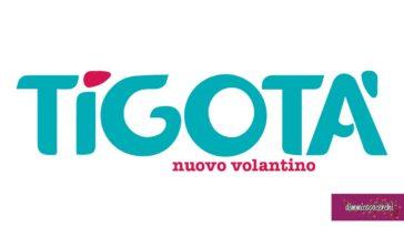 Volantino Tigotà (sempre aggiornato)