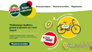 concorso zespri collection