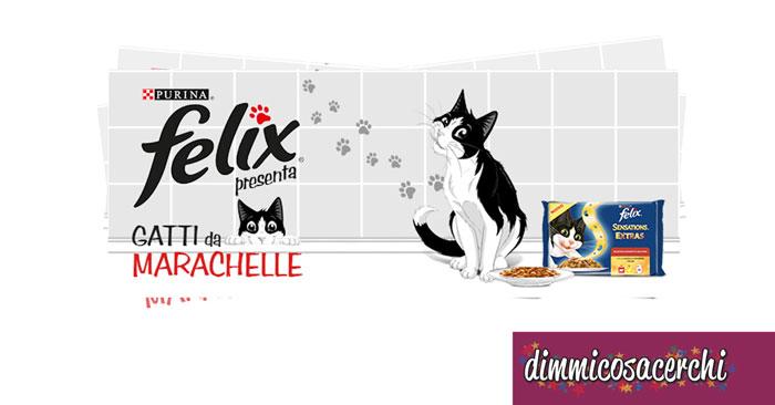 """Concorso Felix """"Gatti da marachelle"""": vinci forniture!"""