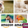 Prodotti per animali domestici su Amazon