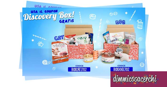 Discovery Box in regalo su Bauzaar
