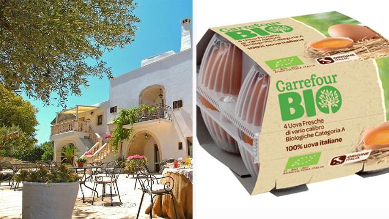 Vinci 1 caricabatterie brandizzato Carrefour con il concorso Bio