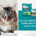 Concorso #salutevisibile: vinci fornitura Purina One gatto