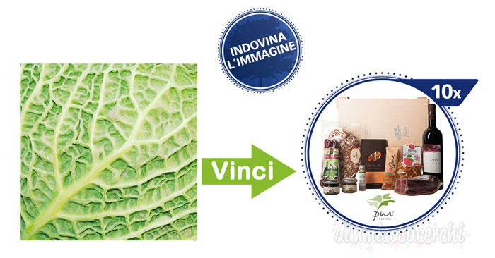 Concorso Stocker: vinci gratis 10 cesti di prodotti alimentari!