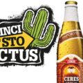 Vinci subito la lampada Cactus di Ceres