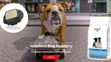 Vodafone Dog Accademy: iscriviti e vinci V-Pet e fornitura di Schesir