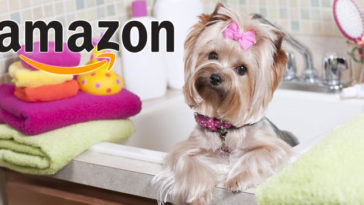 Amazon Pet Star: partecipa gratis