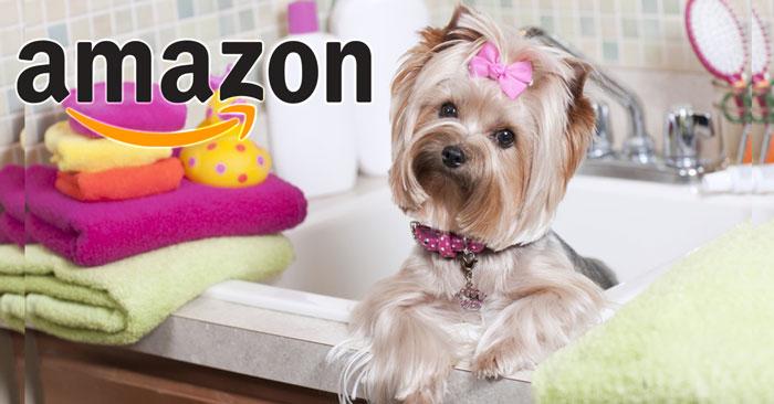 Amazon Pet Star Partecipa Gratis Al Concorso
