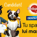 diventa tester dentastix pedigree
