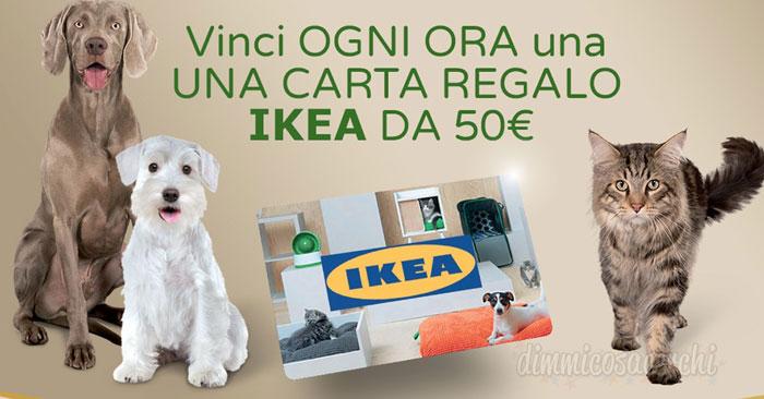 Ultima cane e gatto: vinci ogni ora carte Ikea