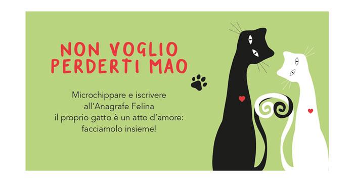 Microchip felino: gratis a Pordenone