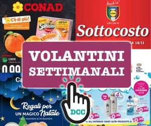 Sfoglia i volantini dei supermercati