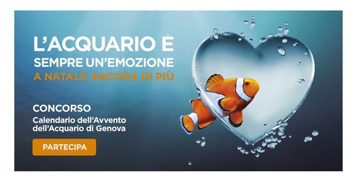 Concorso Acquario di Genova: calendario dell'Avvento