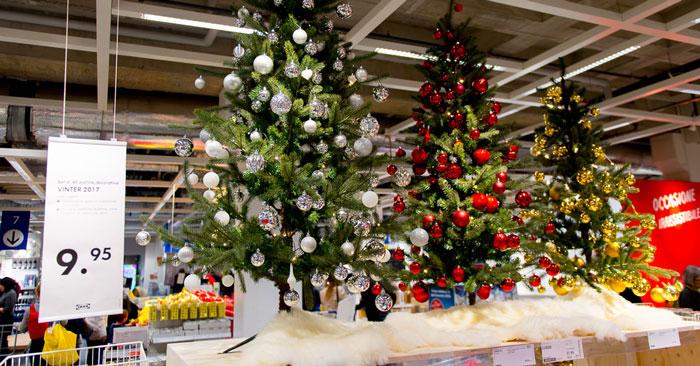 Compostiamoci Bene: entro quando restituire l'albero di Natale