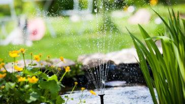 Come risparmiare nella manutenzione del giardino con il Bonus verde