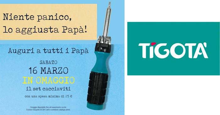 Festa del papà Tigotà
