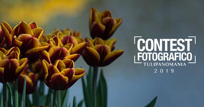 Tulipanomania 2019