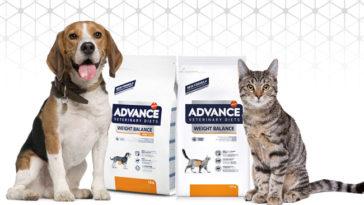 Diventa tester Advance Veterinary Diets Weight Balance