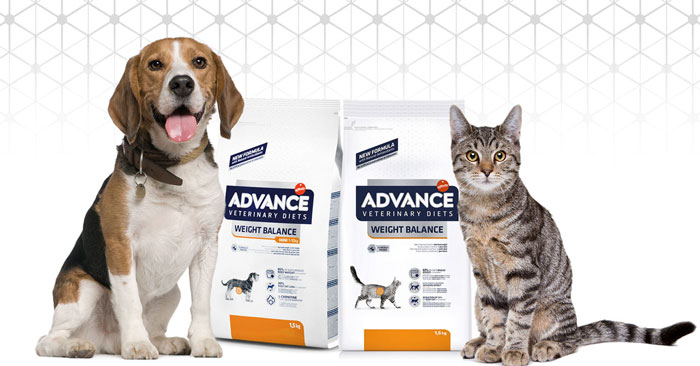 Diventa tester Advance Veterinary Diets Weight Balance