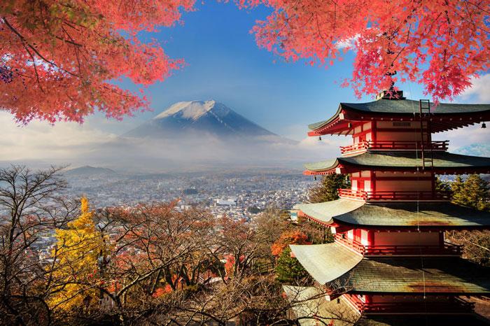 Vinci il Giappone