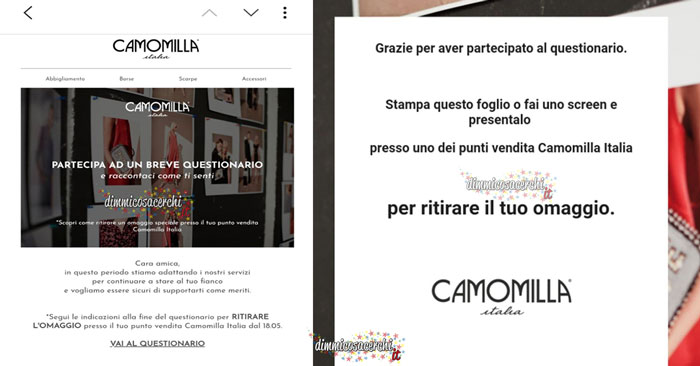 Omaggio Camomilla