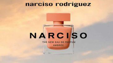 Campione omaggio eau de parfum ambrée NARCISO