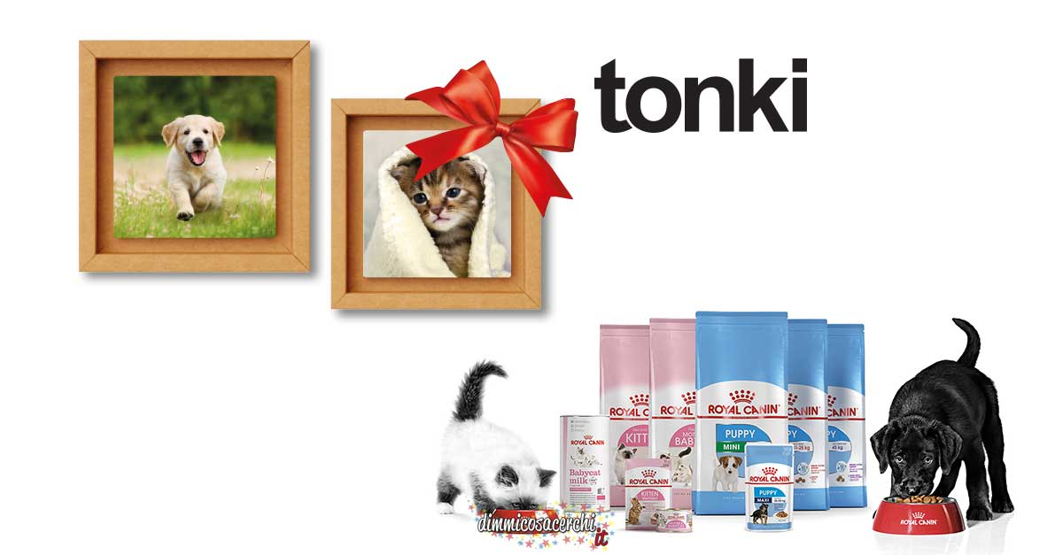 Quadretto Tonki Royal Canin