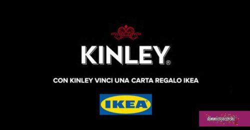 Vinci con Kinley