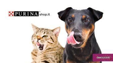 Purina Shop