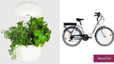 Glade: vinci premi green