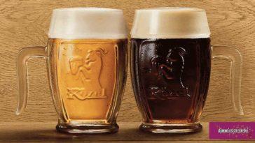 Boccale birra Kozel omaggio