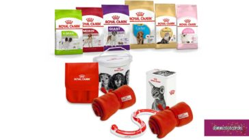 Royal Canin: The Royal Birthday