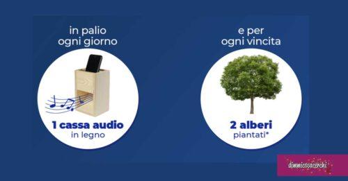 Vinci casse audio in legno con P&G