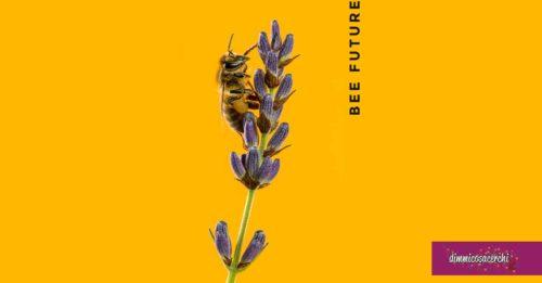 """Concorso """"Bee Future"""