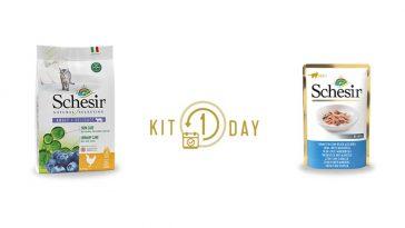 Omaggio Kit One Day Schesir